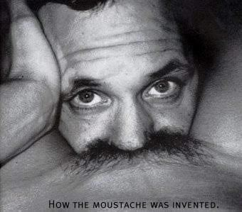 Just like this pic and wanted to post it somewhere - Page 39 Moustache